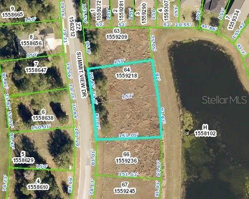 5654 Summit View Drive, Brooksville, FL 34601 (MLS #U8133920) :: The Paxton Group