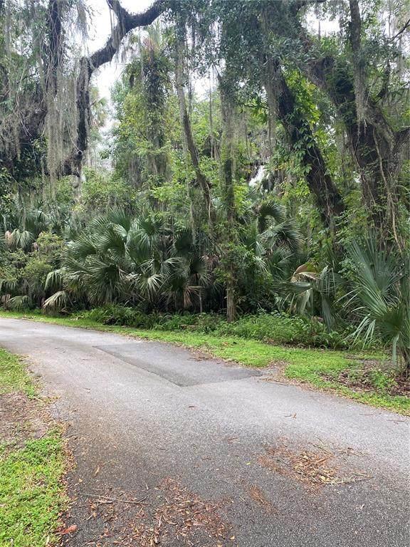 E Park Trail, Deltona, FL 32725 (MLS #U8134979) :: RE/MAX Elite Realty