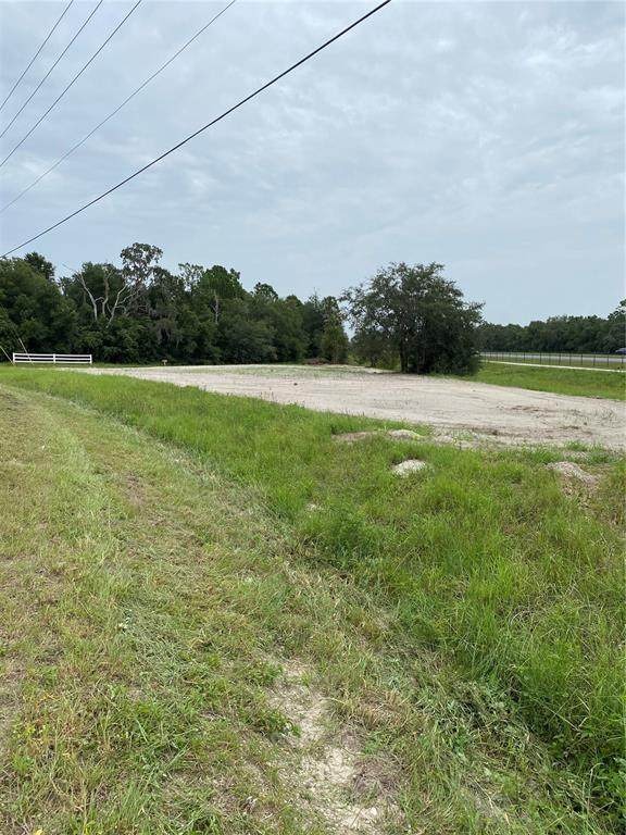 17558 Caufield Road, Spring Hill, FL 34610 (MLS #U8135035) :: Zarghami Group