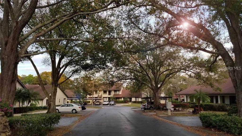 3520 Magnolia Ridge Circle - Photo 1