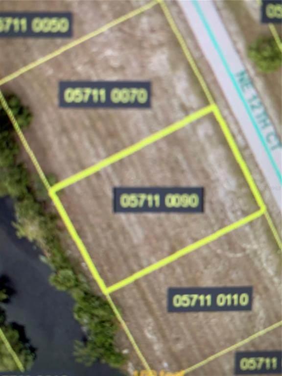 4100 NE 12TH Court, Cape Coral, FL 33909 (MLS #U8136728) :: Team Bohannon