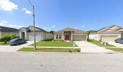 24828 Panacea Court, Lutz, FL 33559 (MLS #U8137365) :: Zarghami Group