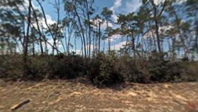 8564 N Lindhurst Circle, Citrus Springs, FL 34433 (MLS #U8140034) :: Armel Real Estate