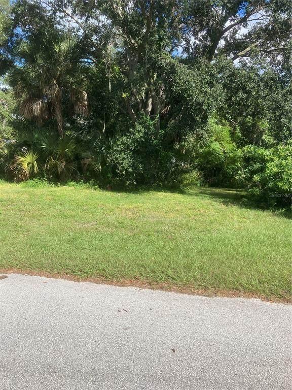 Landfield Avenue, Safety Harbor, FL 34695 (MLS #U8141243) :: RE/MAX Local Expert