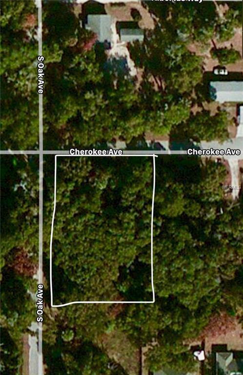 E Cherokee Avenue, Orange City, FL 32763 (MLS #V4722909) :: Griffin Group