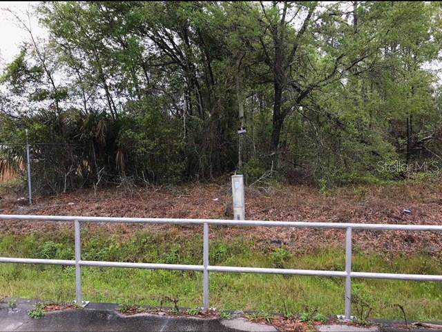 2474 E Intl Speedway Boulevard, Deland, FL 32724 (MLS #V4723554) :: Everlane Realty
