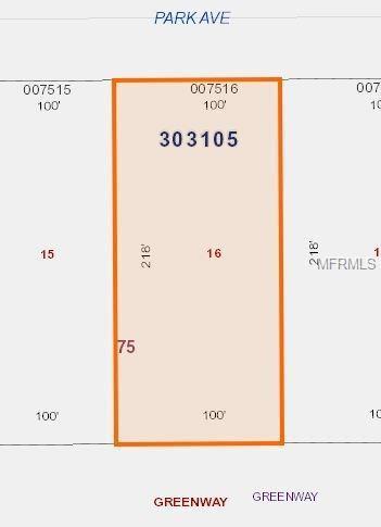 217 E Park Avenue, Lake Wales, FL 33855 (MLS #V4723616) :: KELLER WILLIAMS CLASSIC VI
