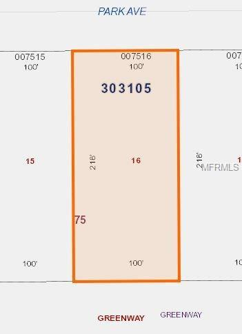217 E Park Avenue, Lake Wales, FL 33855 (MLS #V4723616) :: RE/MAX Realtec Group