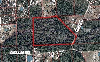 Still Road, Pierson, FL 32180 (MLS #V4723735) :: Griffin Group