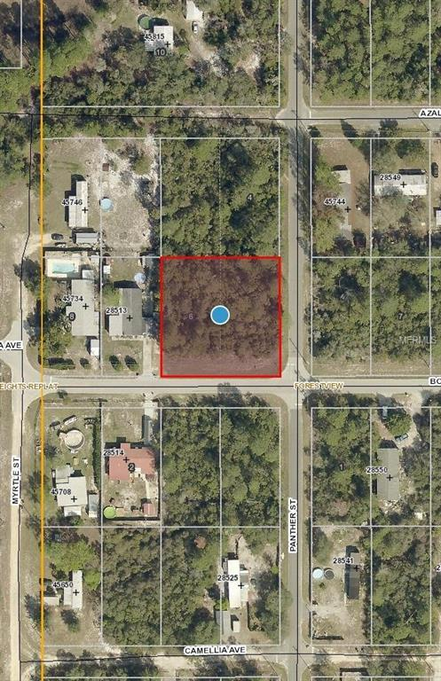 Panther Street, Paisley, FL 32767 (MLS #V4900042) :: The Duncan Duo Team