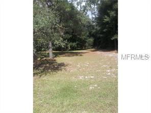2060 Blanton Street, Deltona, FL 32738 (MLS #V4900895) :: Mark and Joni Coulter | Better Homes and Gardens