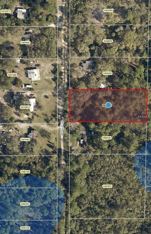 Apollo Lane, Deland, FL 32720 (MLS #V4900950) :: The Price Group