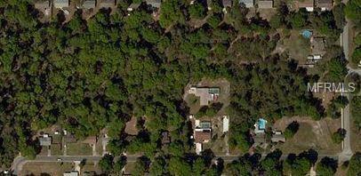 W Elm Drive, Orange City, FL 32763 (MLS #V4901350) :: Griffin Group