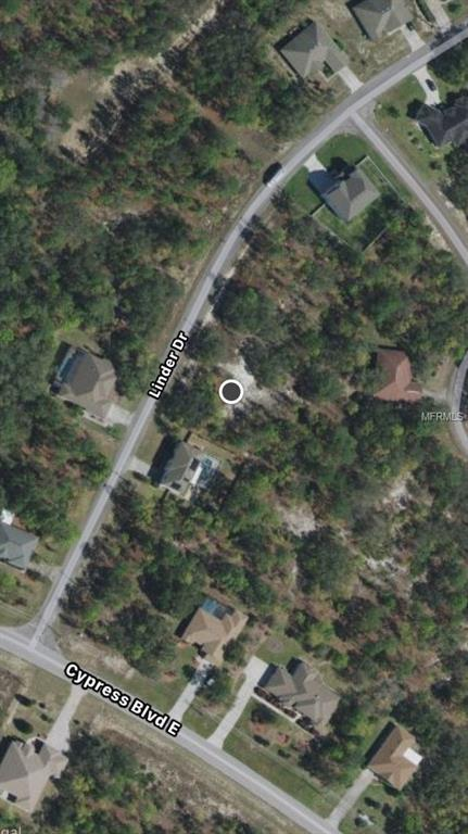 222 Linder Drive, Homosassa, FL 34446 (MLS #V4903166) :: The Lockhart Team