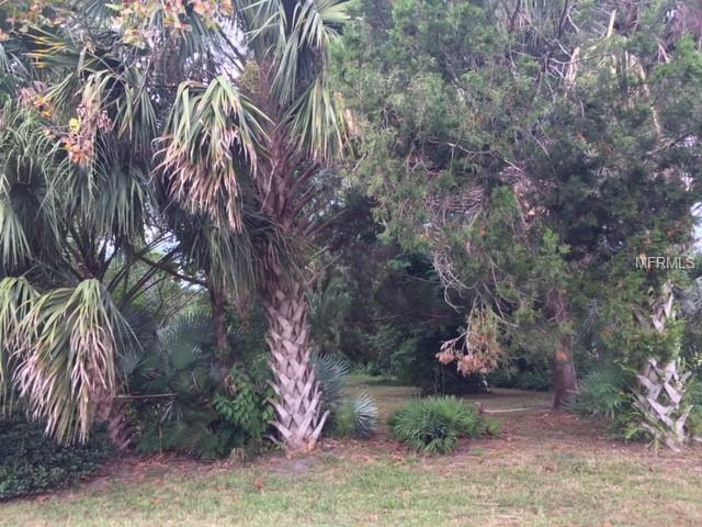 N Clara Avenue, Deland, FL 32720 (MLS #V4903383) :: The Price Group