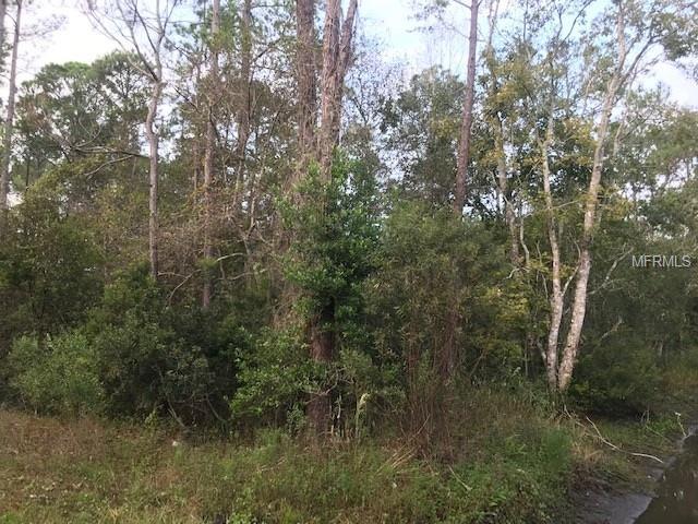 2290 East Parkway, Deland, FL 32724 (MLS #V4903837) :: Griffin Group