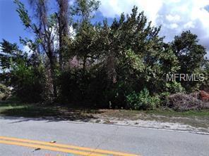 1107 W Seagate Drive, Deltona, FL 32725 (MLS #V4903850) :: Premium Properties Real Estate Services