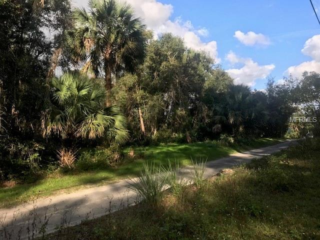 1112 Deerfoot Road, Deland, FL 32720 (MLS #V4904291) :: Mark and Joni Coulter | Better Homes and Gardens