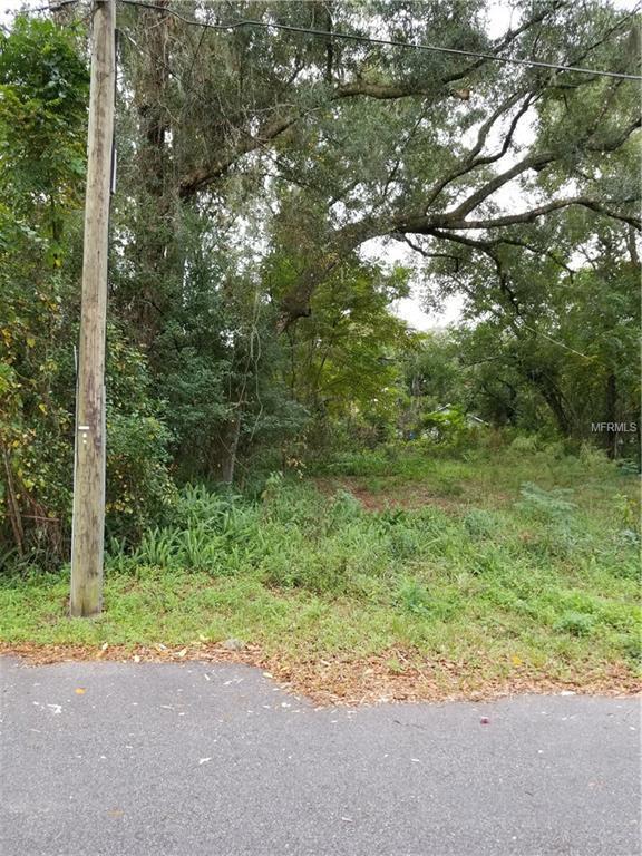 110 E Mercers Fernery Road, Deland, FL 32724 (MLS #V4904637) :: The Duncan Duo Team