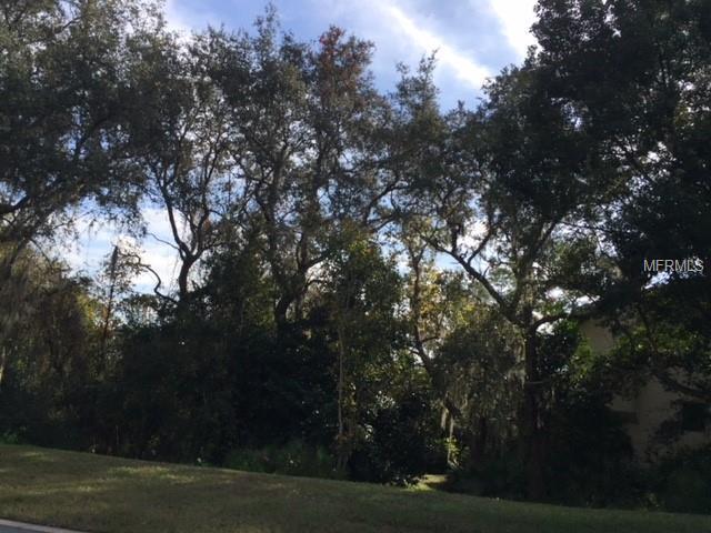 740 Old Treeline Trail, Deland, FL 32724 (MLS #V4904667) :: The Duncan Duo Team