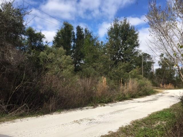 Hickory Avenue, Orange City, FL 32763 (MLS #V4905072) :: The Duncan Duo Team