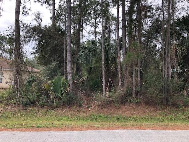 28 Slumberland Path, Palm Coast, FL 32164 (MLS #V4905858) :: The Duncan Duo Team