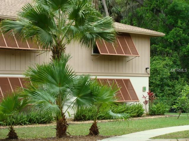100 Sweetgum Woods Court 12B, Deltona, FL 32725 (MLS #V4906260) :: Mark and Joni Coulter | Better Homes and Gardens
