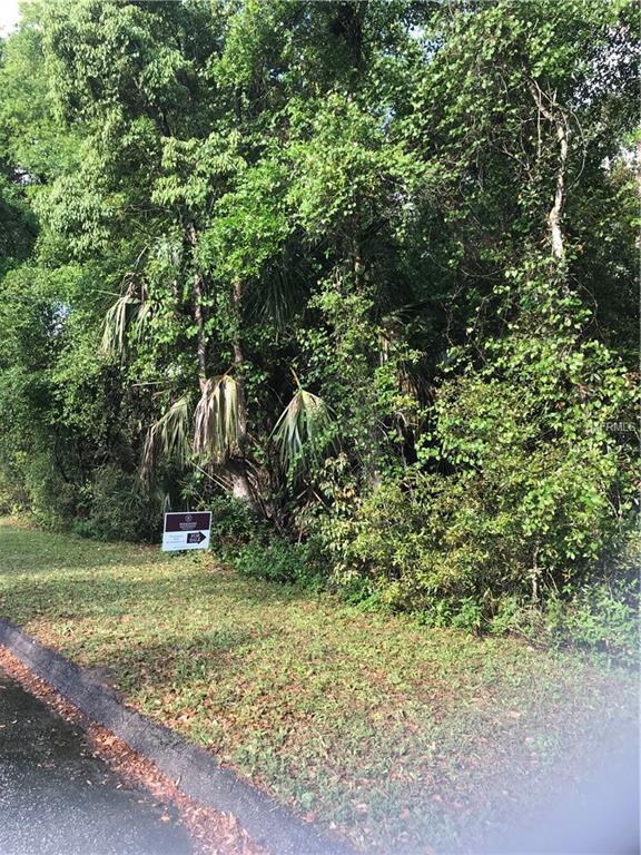 Durfey Avenue, Orange City, FL 32763 (MLS #V4906402) :: Mark and Joni Coulter | Better Homes and Gardens