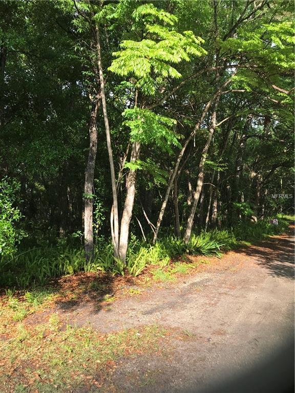 Loomis Street, Orange City, FL 32763 (MLS #V4906413) :: Mark and Joni Coulter | Better Homes and Gardens