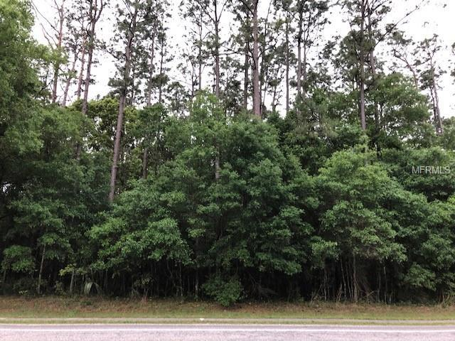E Taylor Road, Deland, FL 32724 (MLS #V4906542) :: Burwell Real Estate