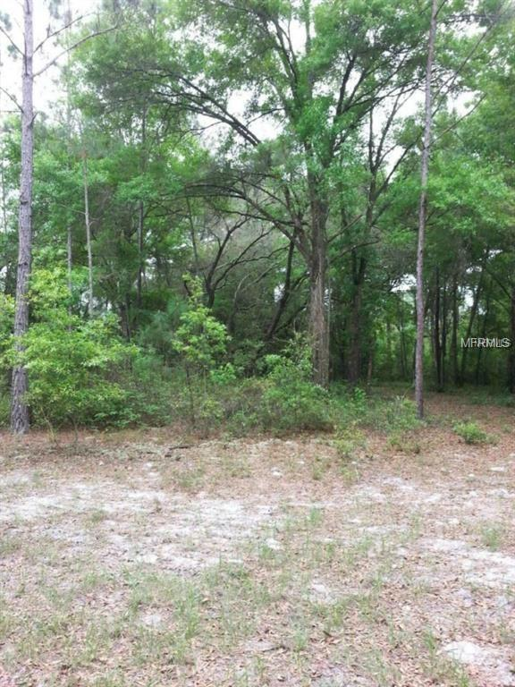 Raulerson Road, Seville, FL 32190 (MLS #V4906620) :: Mark and Joni Coulter | Better Homes and Gardens
