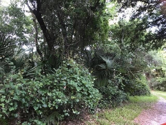 1ST Street, Osteen, FL 32764 (MLS #V4906943) :: Team Bohannon Keller Williams, Tampa Properties