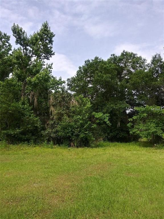 Thomas Avenue, Osteen, FL 32764 (MLS #V4907155) :: Team Bohannon Keller Williams, Tampa Properties