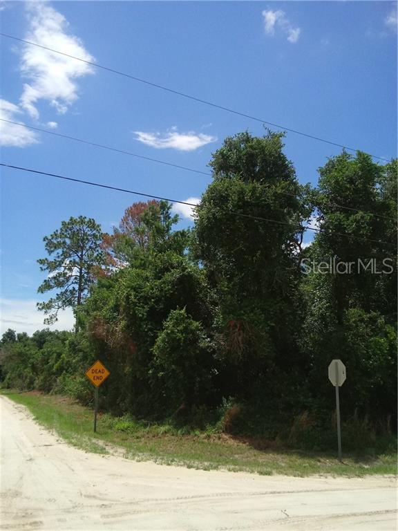 13TH Street, Orange City, FL 32763 (MLS #V4907563) :: The Duncan Duo Team
