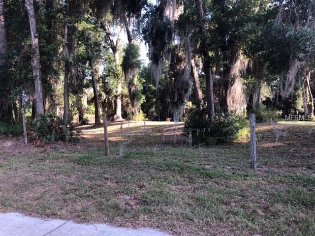 E Taylor Road, Deland, FL 32724 (MLS #V4907627) :: The Duncan Duo Team