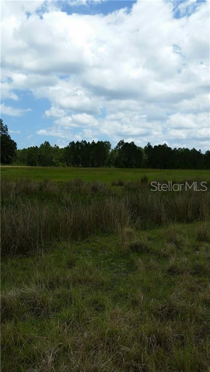 Big John Drive, Deland, FL 32724 (MLS #V4907735) :: Cartwright Realty