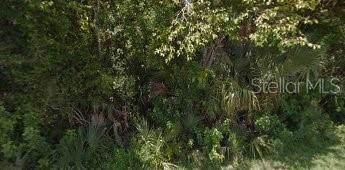 928 Alabama Avenue, Holly Hill, FL 32117 (MLS #V4908412) :: Florida Life Real Estate Group