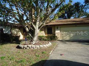 13 Lilac Drive, Debary, FL 32713 (MLS #V4908620) :: GO Realty