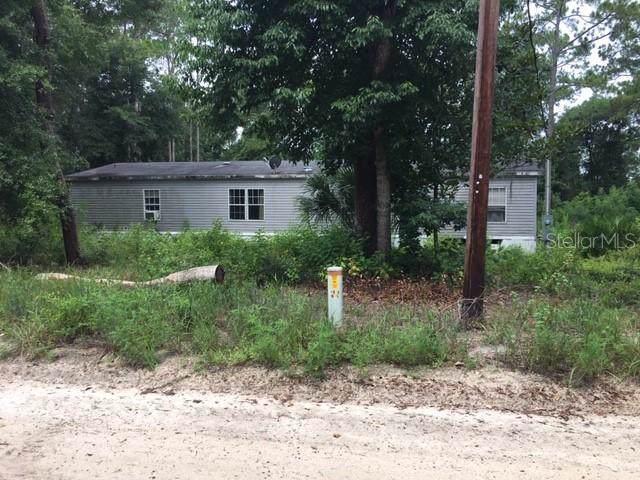 191 Niles Road, Crescent City, FL 32112 (MLS #V4908633) :: Griffin Group