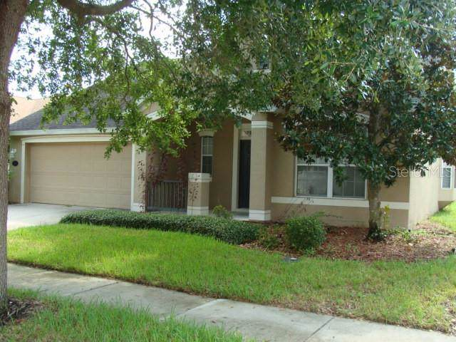 315 Ravenshill Way, Deland, FL 32724 (MLS #V4909042) :: Team 54