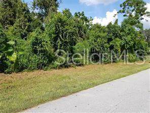 3085 Lake Helen Osteen Road, Deltona, FL 32738 (MLS #V4909437) :: CGY Realty