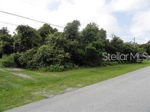 725 N Firwood Drive, Deltona, FL 32725 (MLS #V4909638) :: Premium Properties Real Estate Services
