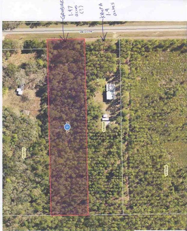 Alco Road, Astor, FL 32102 (MLS #V4910531) :: Team Bohannon Keller Williams, Tampa Properties