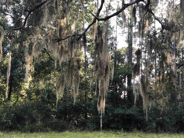 North Road, Deltona, FL 32725 (MLS #V4910959) :: Team Bohannon Keller Williams, Tampa Properties