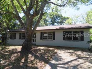 1551 N Sparkman Avenue, Orange City, FL 32763 (MLS #V4911079) :: Team Bohannon Keller Williams, Tampa Properties