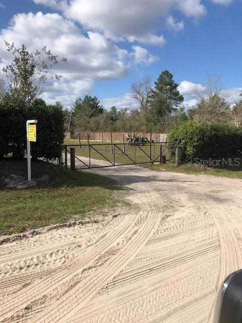 1685 Park Avenue, Orange City, FL 32763 (MLS #V4911578) :: Armel Real Estate