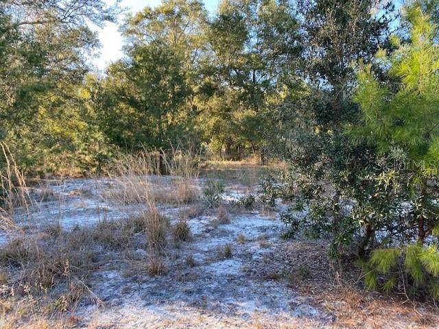 130 Running Deer Trail, Lake Helen, FL 32744 (MLS #V4911734) :: Team Bohannon Keller Williams, Tampa Properties