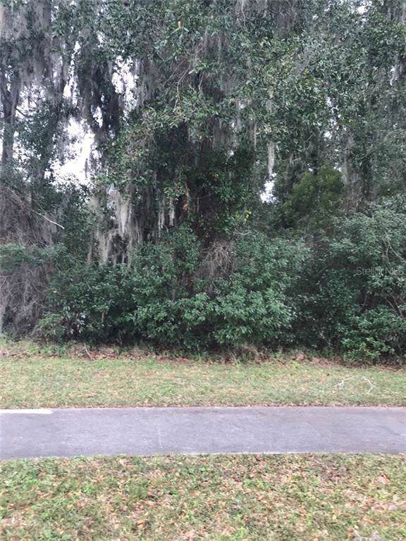 260 Mercers Fernery Road, Deland, FL 32720 (MLS #V4911820) :: The Heidi Schrock Team