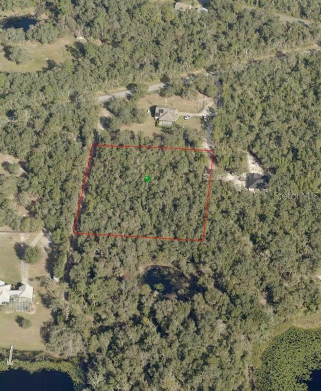 Owls Nest Court, De Leon Springs, FL 32130 (MLS #V4912026) :: The Duncan Duo Team