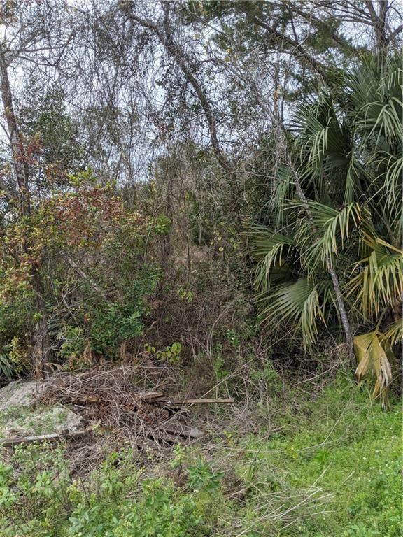 0 Walnut Avenue, Orange City, FL 32763 (MLS #V4912175) :: The Duncan Duo Team